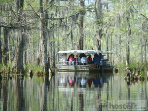 A swamp tour is a