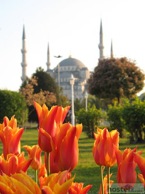 Backpacking Istanbul