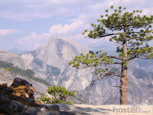 Get to know Yosemite (no more