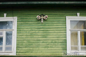 Wooden architecture of Veliky Novgorod