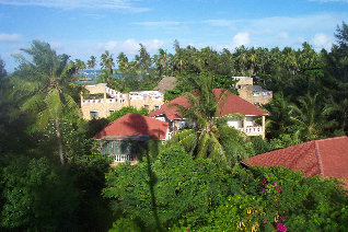 Marijani Holiday Resort from the top of a coconut palm in the garden