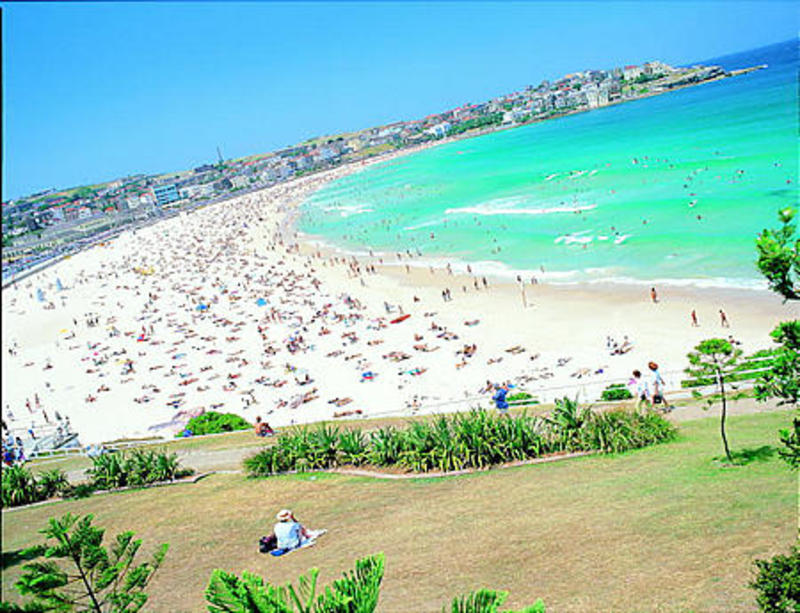 The Village Bondi Beach Sydney Australia Reviews