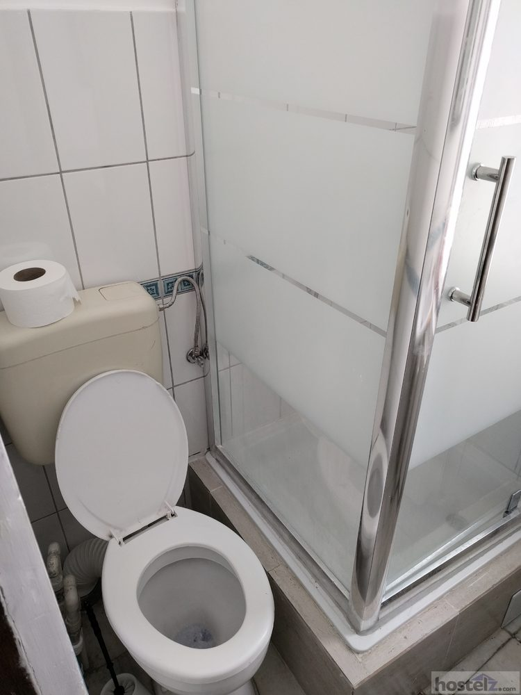 Toilet and shower in the same room, no hooks for belongings, but clean and with good water pressure.